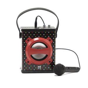 Parlante Karaoke Con Bluetooth – Eureka